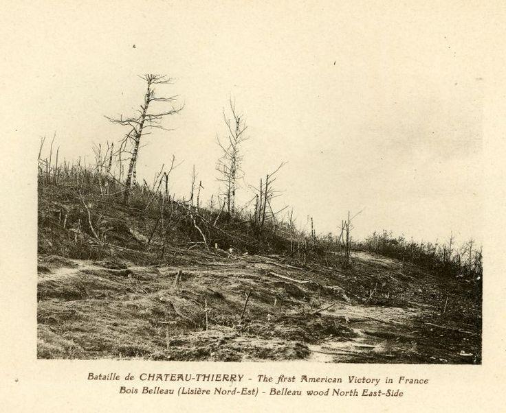 Bataille de CHÂTEAU-THIERRY - The first American Victory in France. Bois Belleau (Lisière Nord-Est) - Belleau wood North East-Side