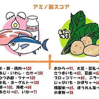 たんぱく質をとるなら、 それが美肌になるための栄養素として しっかり体内に取り入れたいですよね? ・ ・ たんぱく質を効率よく摂るためには 良質なたんぱく質を摂ることが不可欠です。 ・ ・ そのたんぱく質の良し悪しを決める基準が 【アミノ酸スコア】です。 ・ ・ たんぱく質は体内に入ったら 消化によって分解され、 アミノ酸になることで 初めて栄養素としての働きをします。 ・ ・ アミノ酸スコアの数値が【100】 に近ければ近いほど、 アミノ酸に分解されやすい 良質なタンパク質とされています。 ・ ・ 【アミノ酸スコアが高い食材】 動物性たんぱく質 卵、牛乳、牛肉、豚肉、 マグロ、サーモン、 いわし、鯵 ・ ・ 植物性たんぱく質 白米、小麦粉、 トウモロコシ、大豆 ・ ・ アミノ酸スコアが 高いものだけを食べるのが良い というわけではなく、 ・ アミノ酸スコアが低ければ、 それを補う食品を組み合わせて 食べるようにしてください。 ・ ・ 例えば、 アミノ酸スコア60の白米の おにぎりだけではなくて、 ・ アミノ酸スコア100の牛肉と アミノ酸スコア40の玉ねぎを…