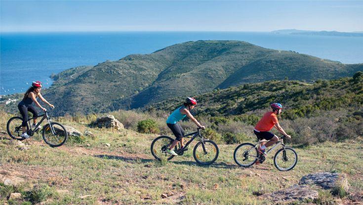 ¿Qué bicicleta de montaña regalar estas Navidades?