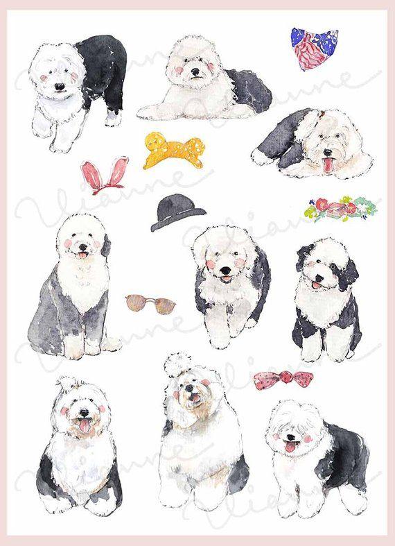 Clip Art Watercolor Ole English Sheepdog Set 16 Images Digital