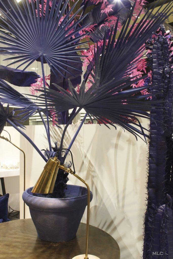 25+ best ideas about plante bleue on pinterest   bloom fleurs