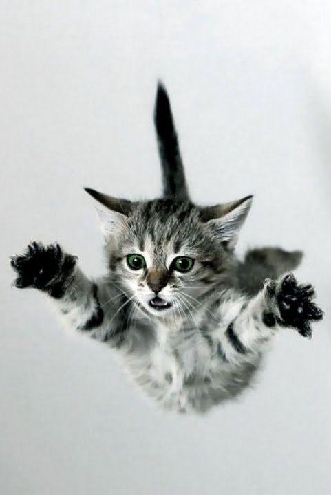 sé que puedo volaaar! jajaja