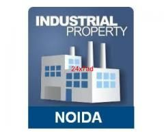 Shed / Factory / Godown For Rent Noida