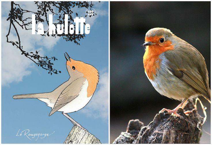 Deux fois l'an, parfois plus mais jamais moins, le magazine La Hulotte, mêle avec grâce l'art du dessin et celui de la plume. Inivité du dernier numéro: le rouge-gorge.