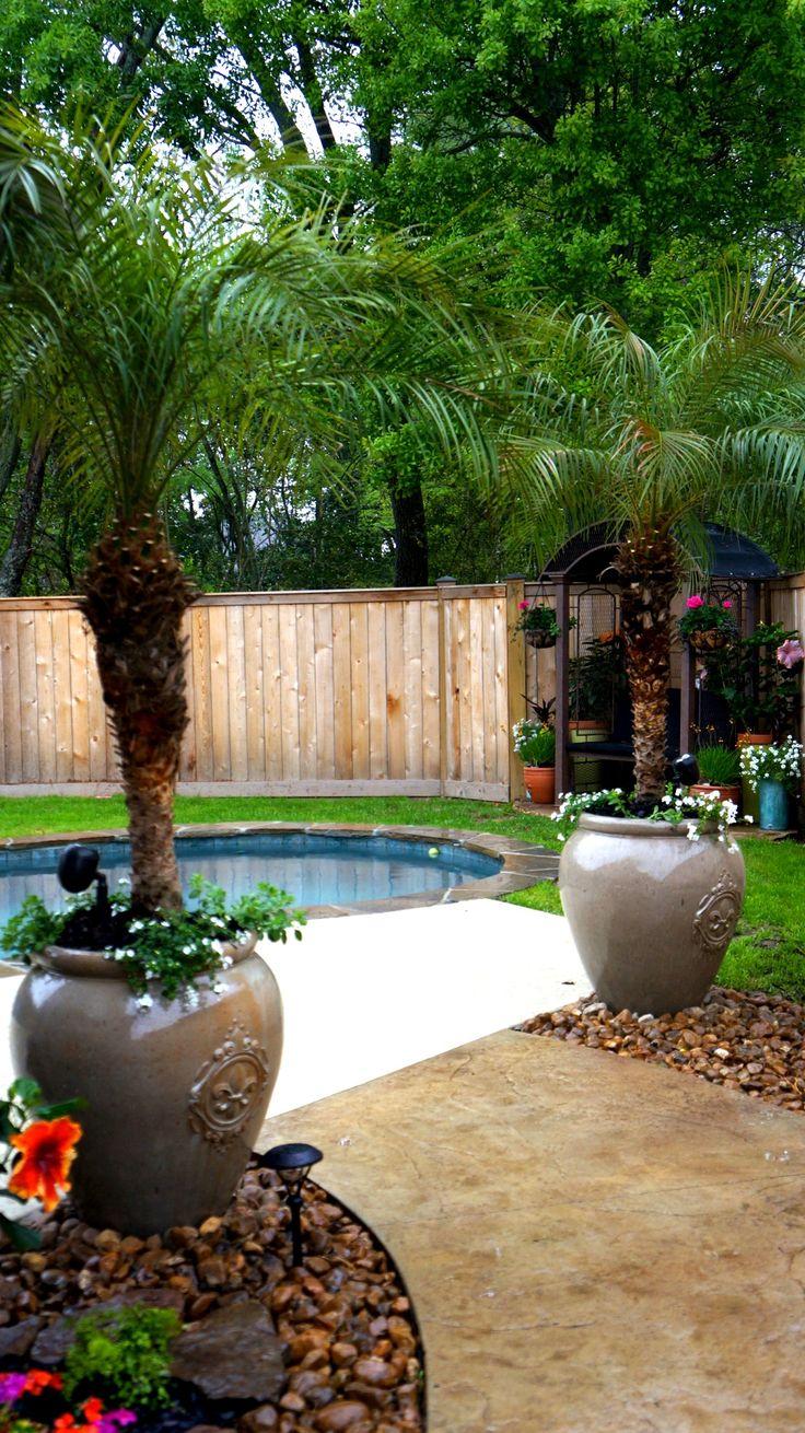 Pool landscape...dwarf Pygmy Date Palms in Fleur de lis pots.                                                                                                                                                      More