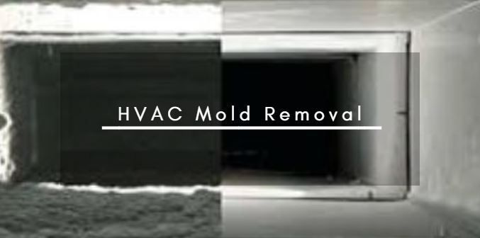 Hvac Mold Removal From Your Hvac System And Air Ducts Is An