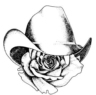 Cowboy Hat and Boots Drawing | Queen Tryouts March 1, 2014
