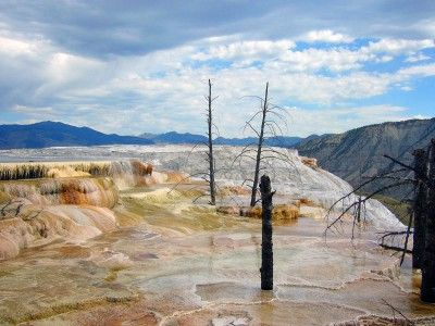 Yellowstone NP