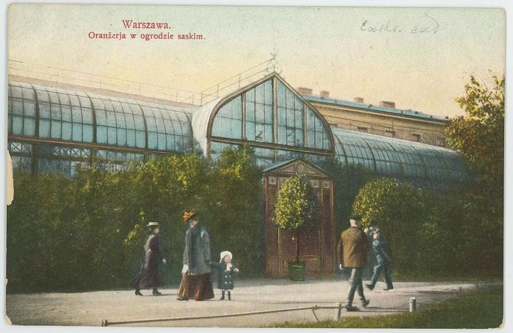 Warsaw, Saxon Garden, Orangery, 1910.