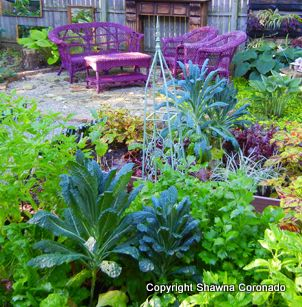 How To Grow A Vegetable Garden In Shade The Story Of A French Potager Kitchen Garden Gone Shade Shawna Coronado