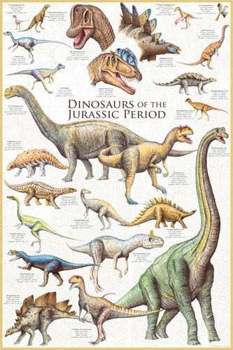 Did Dinosaurs Drink Water