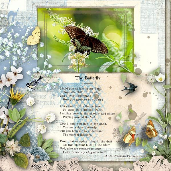 Layout using G & T DESIGNS' THE BUTTERFLY JOURNALS KIT is available at E-scape and Scrap. Includes 70 Elements, 18 Papers, 6 Fragments . 8 Frames and 16 Wordarts Butterfly photo is by Judy Case Deaver