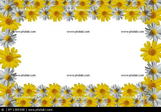 http://www.photaki.com/picture-frame-with-white-and-yellow-daisies-on-white-background_1385368.htm