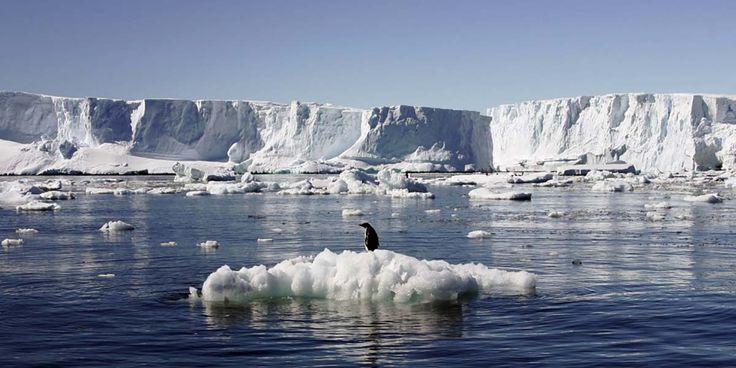 78 kadın #iklim değişikliği üzerinde çalışmak için Antarktika'ya gitti: #Kadınlar keşfi-