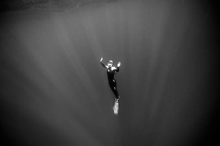 L'ambientalista, fotografa e subacquea Ocean Ramsey riemerge dopo un'immersione al largo delle coste di Oahu, nelle Hawaii. Ramsey ha dedicato la sua vita alla preservazione degli squali, ed è conosciuta per le immersioni senza gabbia tra gli squali bianchi e gli squali tigre, per provare a cambiare la percezione pubblica di questi predatori marini.