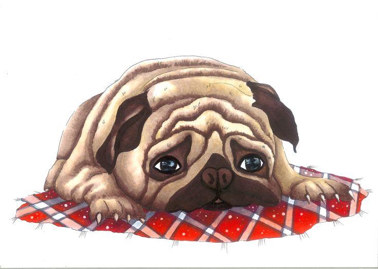 Sad Pug | drawn by Anastasia Opachanova