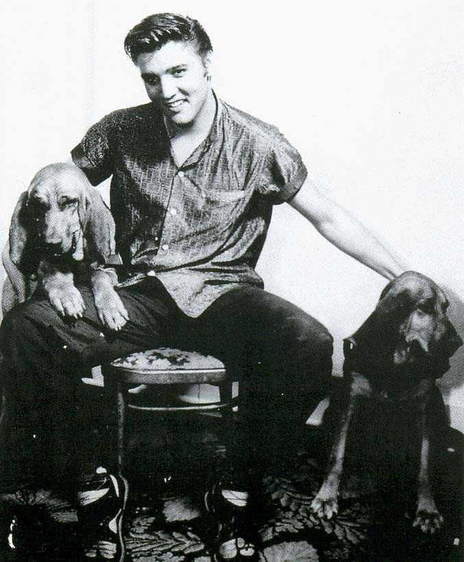 """.A Promo Still For The Single, """"Houndog""""...Which, Truly, Needed NO Promotion!!"""