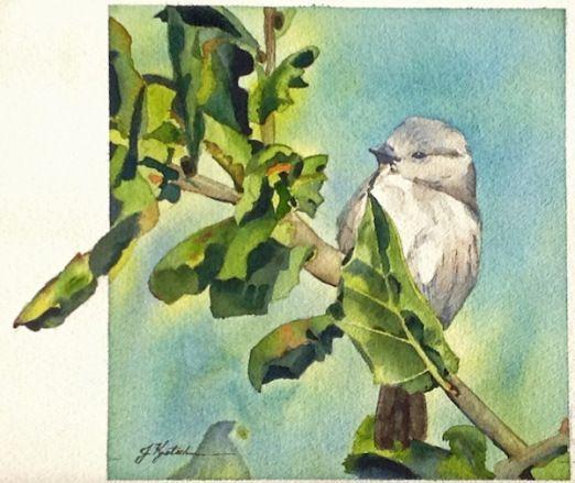 http://www.jkretschmer.com/pages/30in30.html A Cute Bird, Original Watercolor painting by Jennifer Kretschmer