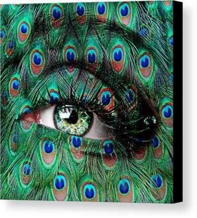 Peacock Canvas Print / Canvas Art