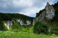 """Dolina Kobylańska - Długość doliny to około 4km, a przez jej środek płynie malowniczy strumień """"Kobylanka""""."""