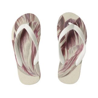 Vintage drawing of a white and red tulip kid's flip flops http://www.zazzle.com/vintage_drawing_of_a_white_and_red_tulip_kids_flip_flops-256721688436437123?rf=238731775801296307