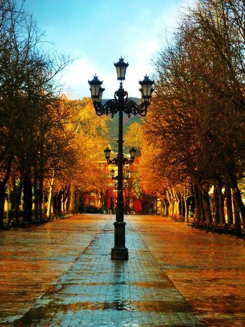 leavesMadrid Spain, Seasons, Autumn, Lamps Post, Colors, Beautiful, Fall, Travel Tips, Places