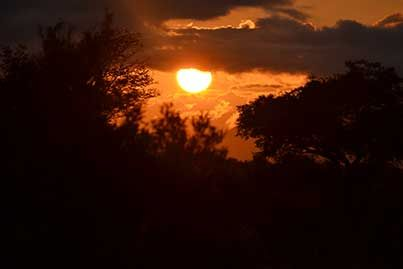 A magnificent sunset on Kapama Game Reserve. As always – wish you were here!