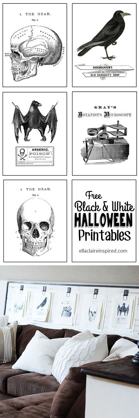 Free Black and White Vintage Halloween Printables with a link to the tutorial to make this fun Mousetrap Wall art board! details at ellaclaireinspired.com
