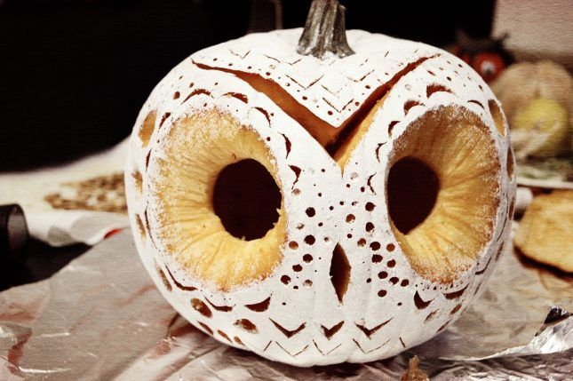 Save this creative pumpkin carving idea to make a white owl.