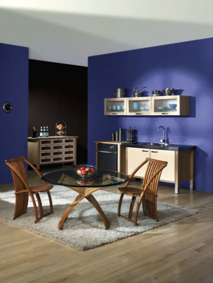 Sherwin Williams 2017 Color Forecast High Voltage Frank Blue Sw 6967