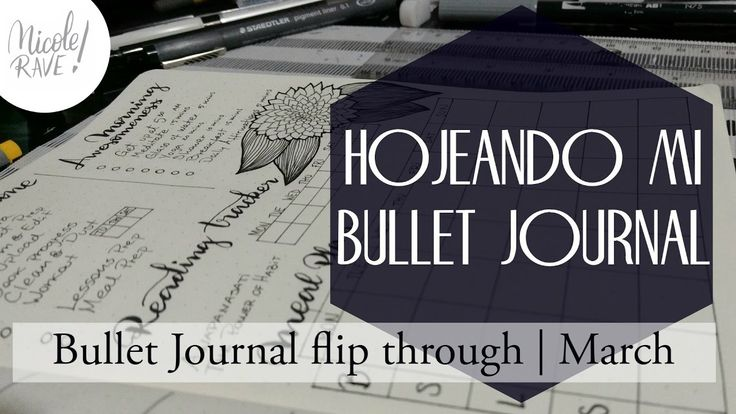 Bullet Journal Flip Through | March
