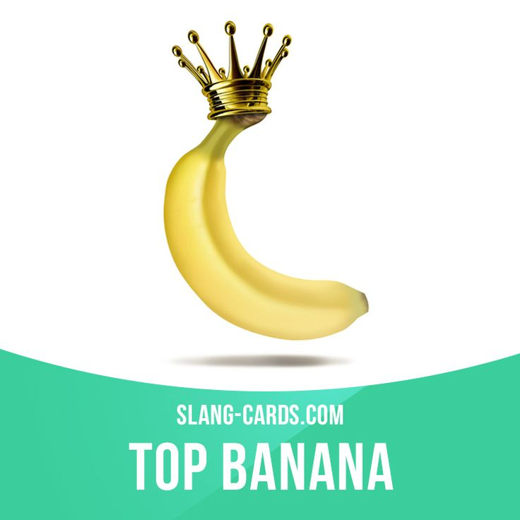 """Top banana"" means the most important person in an organization. Example: If you want a raise, you'd better talk to the top banana about it, not me. Get our apps for learning English: learzing.com"