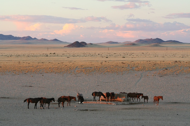 how to start a tour company in kenya