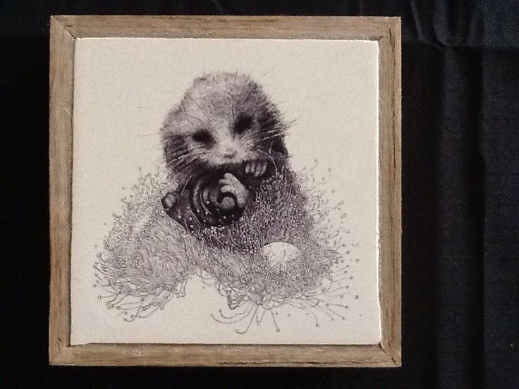 """""""Blossom Nap"""", pen and ink illustration by Shelley Lee Langdon, Printed onto stone, using recycled materials. $95"""