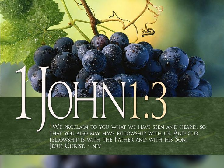 john bible quotes - Google Search