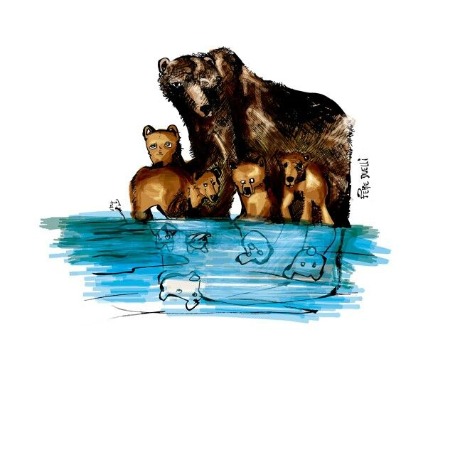 Grizzly bear anatomy | animal life | Pinterest