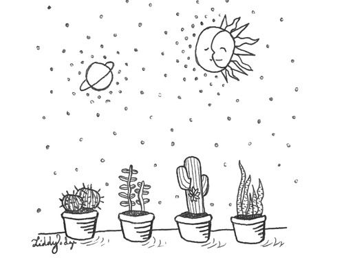 кактус, луна, планета, растения, космос, солнце, Tumblr