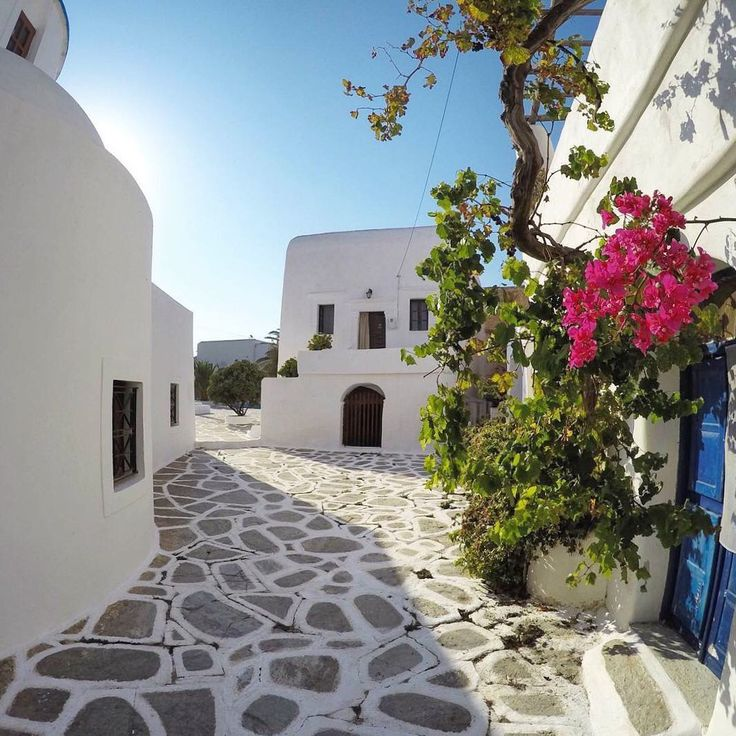 island of Sikinos (Σίκινος) Take a walk down this adorable alley ☀️