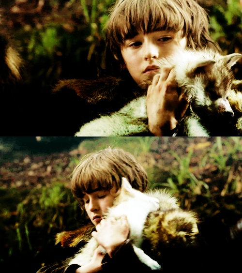 Bran Stark and Little Summer