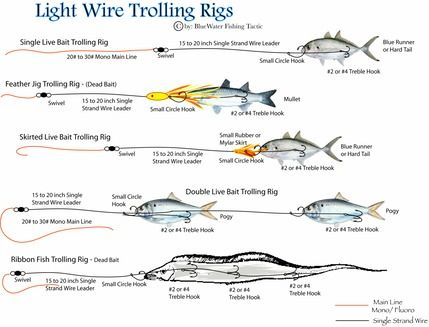 Light wire trolling rigs fishing rigs pinterest wire for Best saltwater fishing line