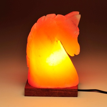 What Does A Himalayan Salt Lamp Do Enchanting 50 Best Salt Lamps Images On Pinterest  Salt Salts And Himalayan Inspiration Design