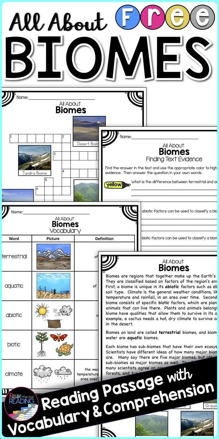 FREE Biomes Activity: Biomes Reading Passage [ 1472 x 736 Pixel ]