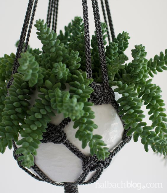 Más de 25 ideas increíbles sobre Blumenampel selber machen en - blumenampel selber machen hangekorb