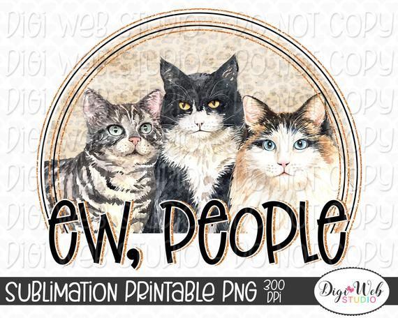 39+ Kitten creator ideas in 2021