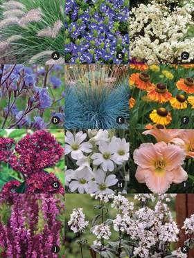 Expandable Garden Extension (Garden Design And Plants)