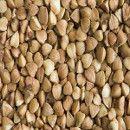Las propiedades del trigo Sarraceno o Alforfón