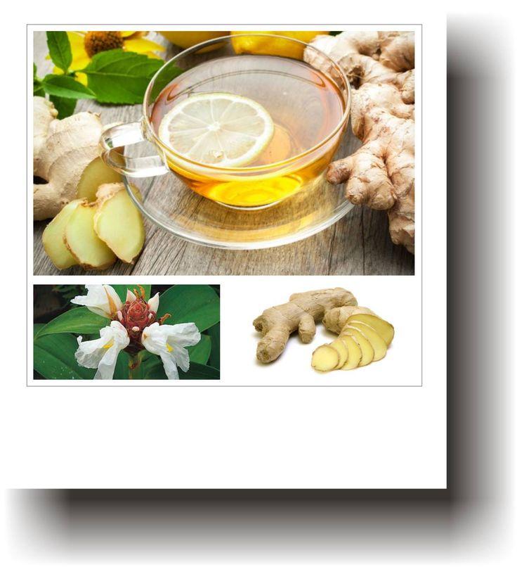 Plante medicinale – GHIMBIR
