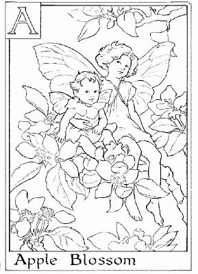 150 best Flower Fairies images on Pinterest Flower fairies