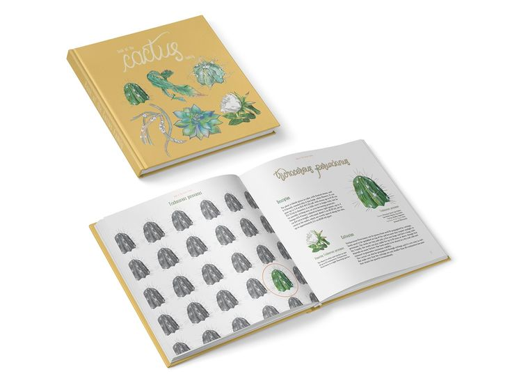 Book of the Cactus Family