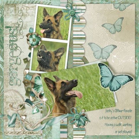 Layout of the day ~ March 29, 2015 - Gotta Pixel http://buff.ly/1xpw18l